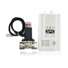 AW-CGD2166-1 Standalone Gas Detector With Magnetic Valve